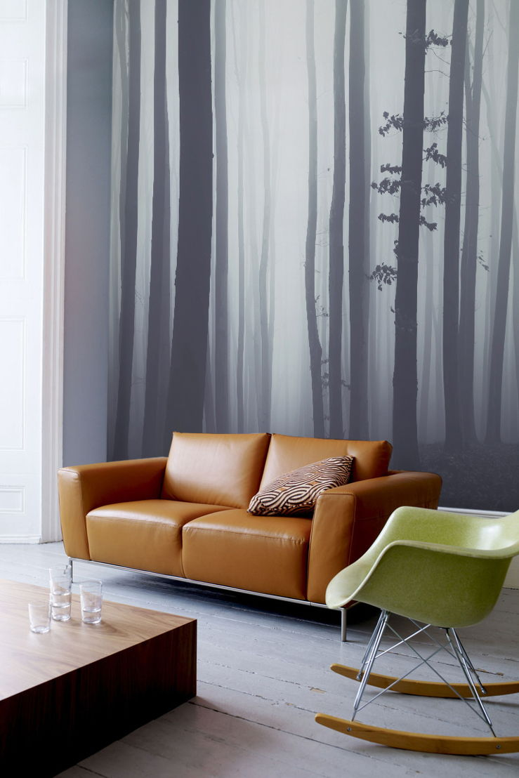 Forest Wallpaper Mural