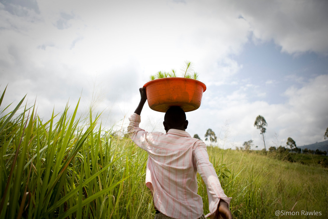 Une transformation radicale de l'utilisation des sols est nécessaire pour lutter contre la crise climatique, selon le WWF