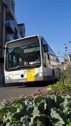Vanaf vandaag kopen KBC*-klanten rechtstreeks via KBC Mobile een digitaal ticket voor bus- of tram bij De Lijn. Internetbankieren kan de KBC*-klant vanaf nu ook met itsme®.