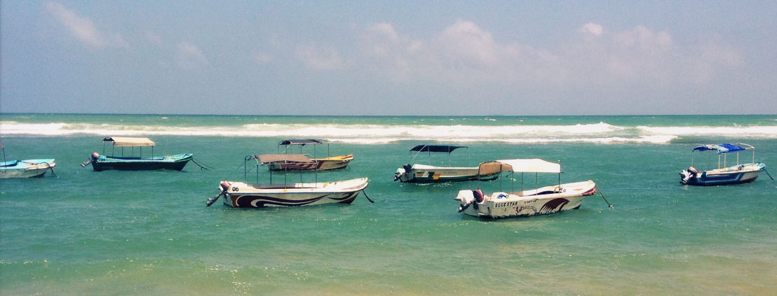 Sri Lanka (c) Peter Beaufays
