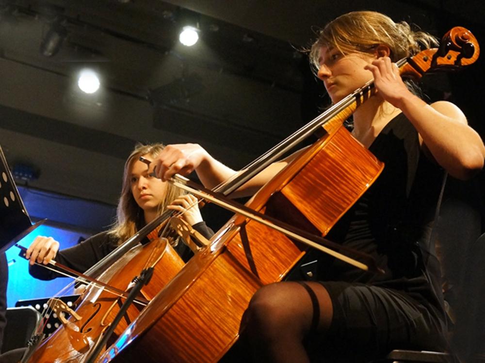 slac-cello (c) erikO