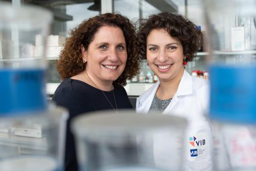 VUB-Yamina Krossa Fonds schakelt versnelling hoger in strijd tegen borstkanker