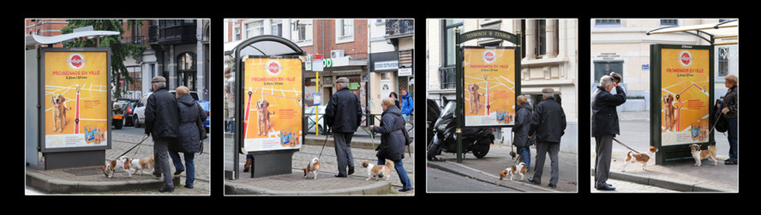 Pedigree and DDB Brussels launch interactive city walks via bus shelter ads.