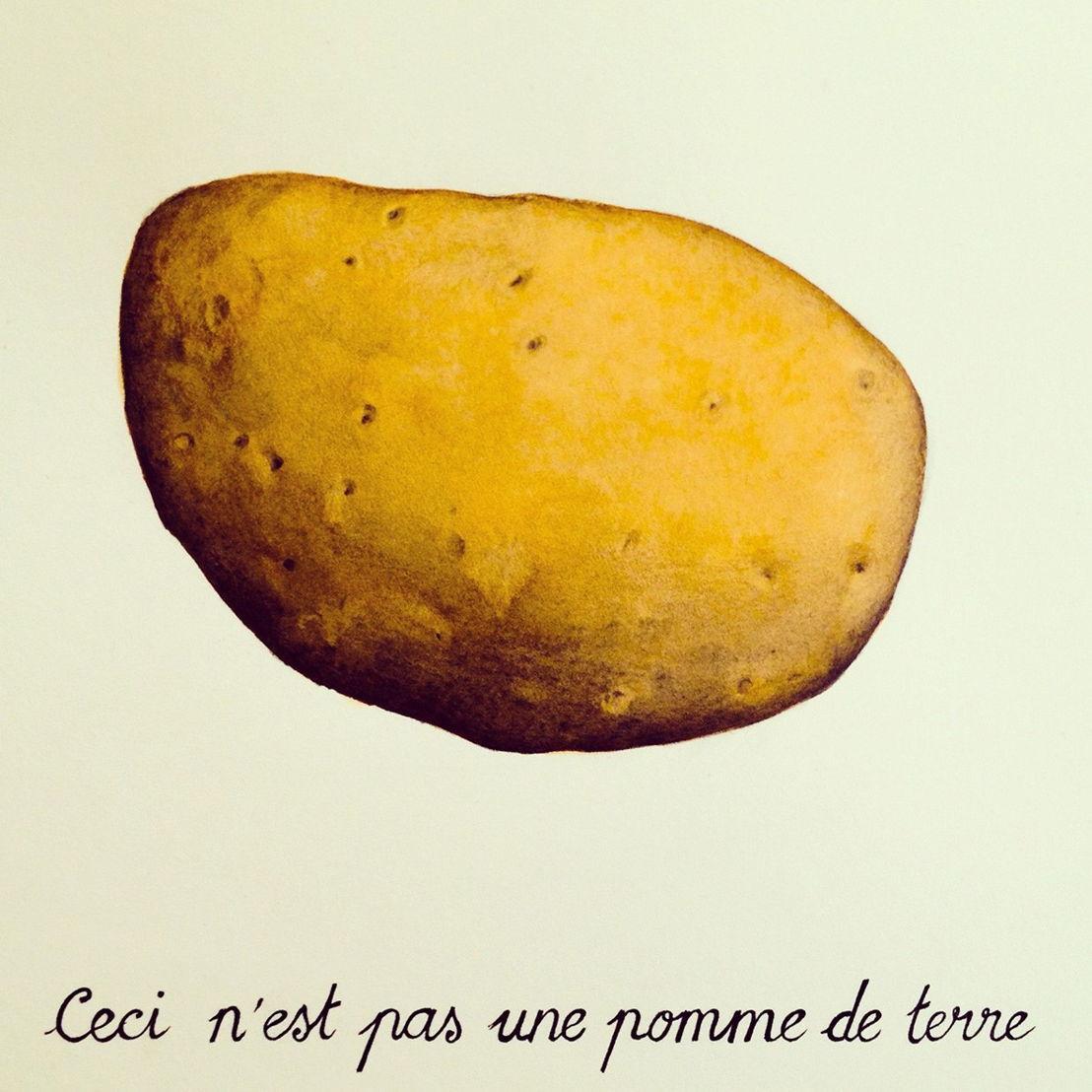 Galerie Zink_Javier Calleja, Ceci n'est pas une pomme de terre, 2014, mix media on paper, 18 x 26 cm