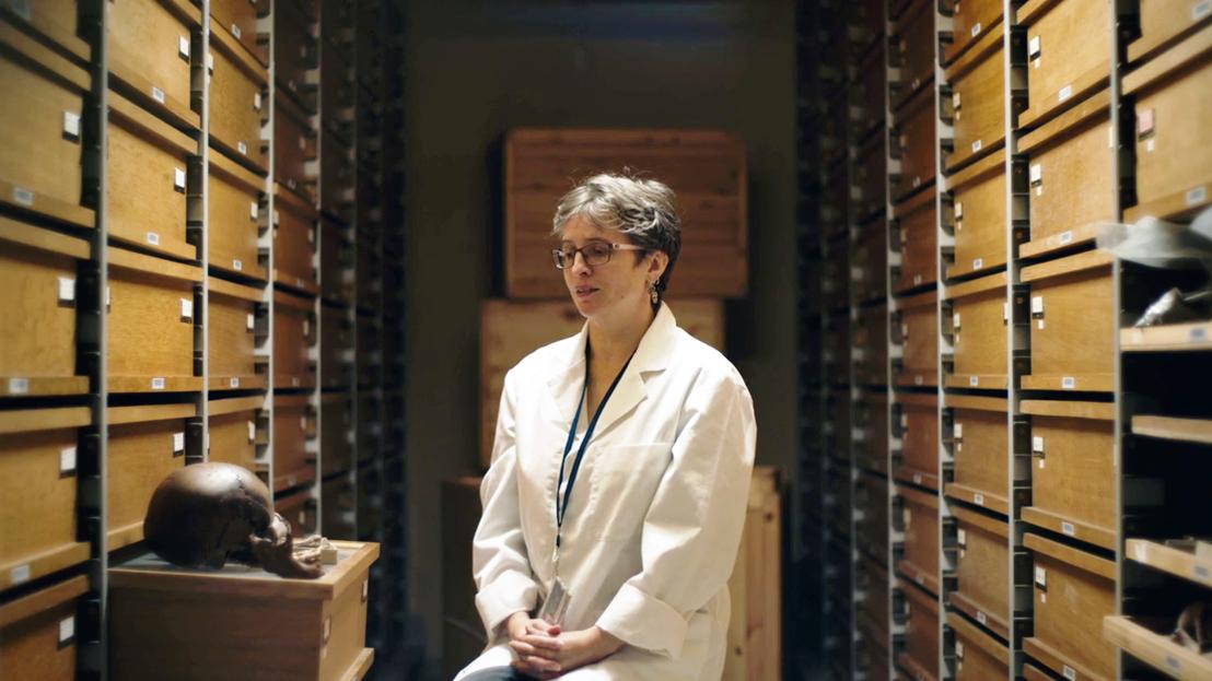 De zoekende mens - Caroline Polet bij de menselijke collectie