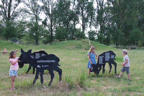 Het Kampveld in Oostkamp heeft een gloednieuw plekje speelnatuur!
