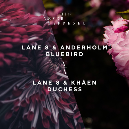 Lane 8 Releases Double A-side of Collaborations