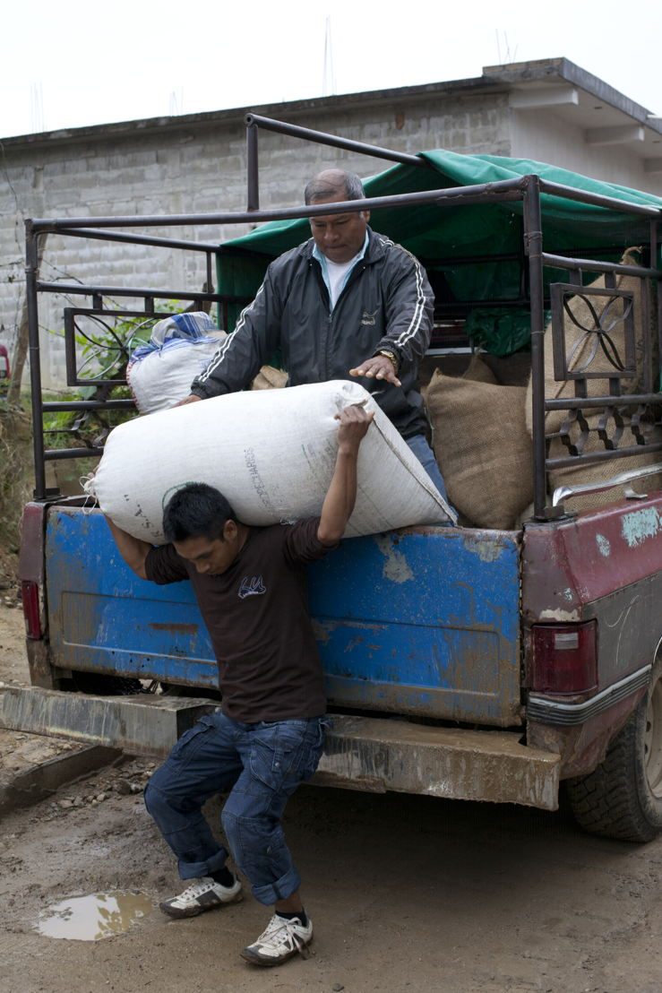 As owners of a small coffee cooperative, CIRSA's farmers lack many labor-saving tools.
