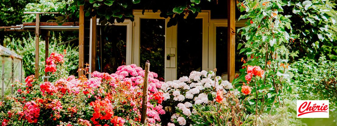 Chérie offre un jardin de rêve à l'un de ses auditeurs !