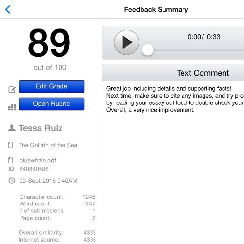 Turnitin Feedback Studio iPad detail