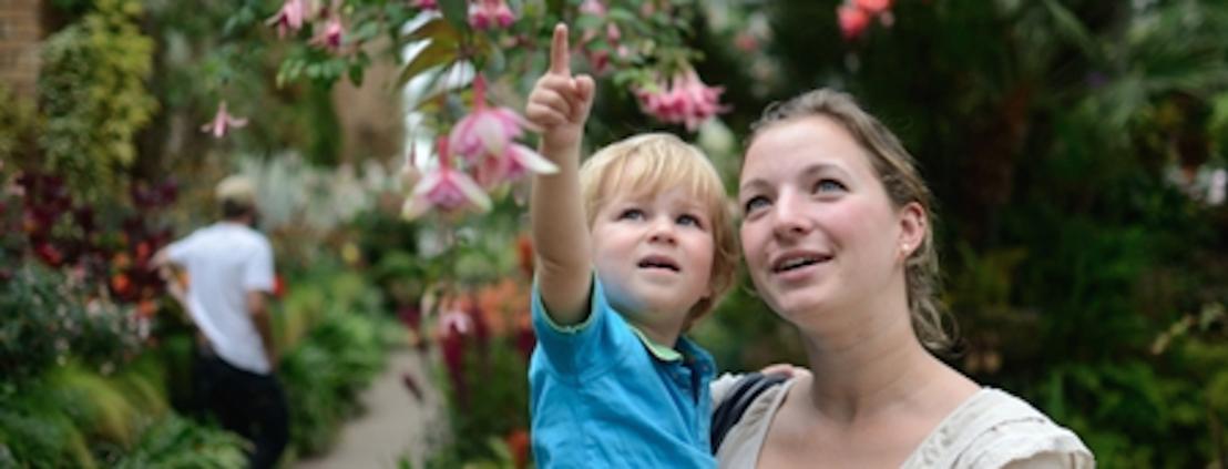 Werk in het buitenland als au pair met Jobstop