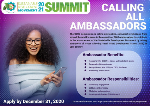 Leaders from around the World are Invited to Apply for the SDM 2021 Ambassador Programme