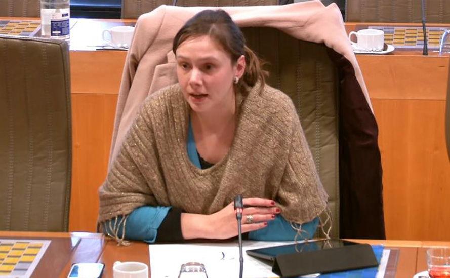 Freya Saeys, Open VLD