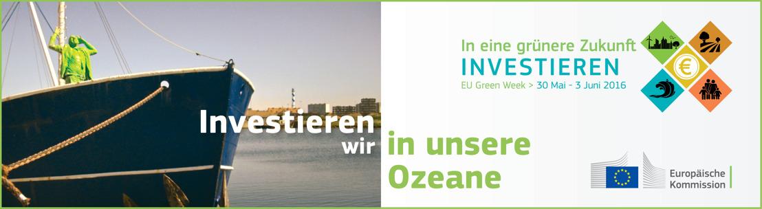 """Meereskundliche Projekte heben den Wert der """"blauen Wirtschaft"""" Europas hervor"""