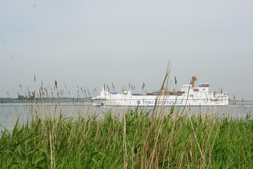 Ecologische voetafdruk haven van Antwerpen blijft stabiel, overslag en productie stijgen