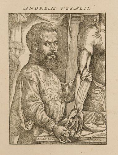 Portrait d'André Vesale dans: André Vésale, De Humani Corporis Fabrica Libri Septem, Bâle, 1543 © KU Leuven, Bibliothèque universitaire, inv. CaaC17 – Bruno Vandermeulen.