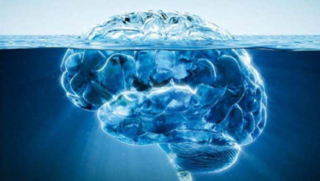 Nood aan braincirculatie in West-Vlaanderen