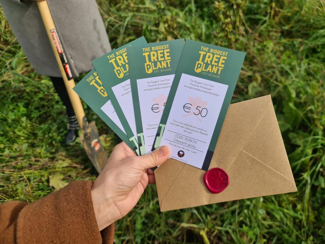 Ondernemers lanceren grootste boomplantactie in Vlaanderen ooit