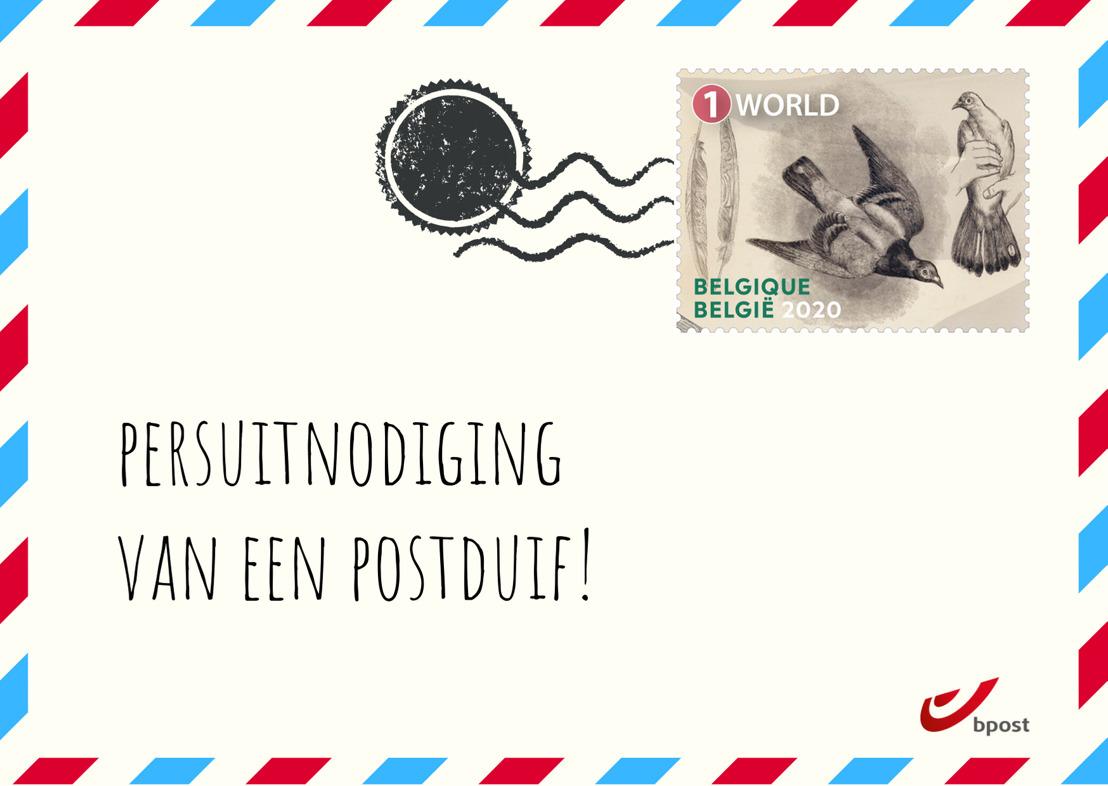 [UITGESTELD] Persmoment: Speciale postduif vliegt de lucht in met nieuwe postzegels te Lommel