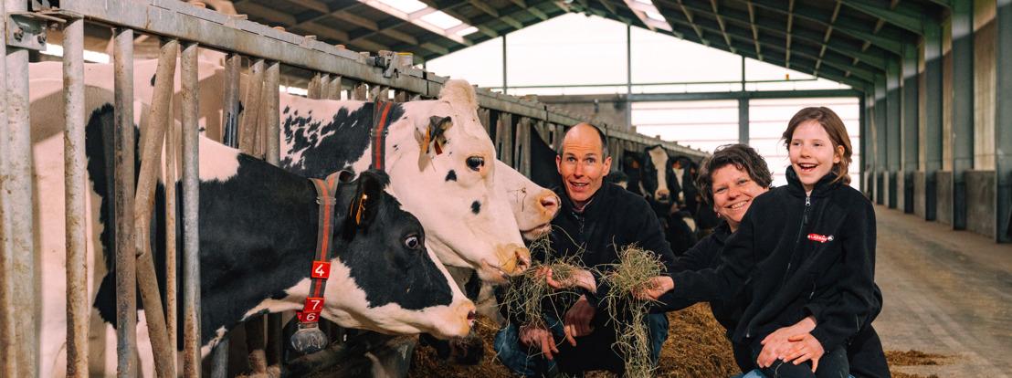PERSUITNODIGING - Melkveeboerderij uit Kalmthout levert groene stroom voor muziekfestival Werchter Parklife