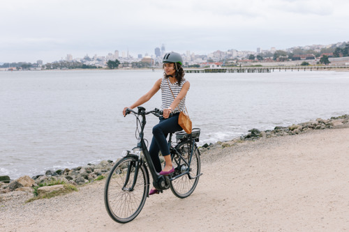 GAZELLE INTRODUCES THE ARROYO EBIKE