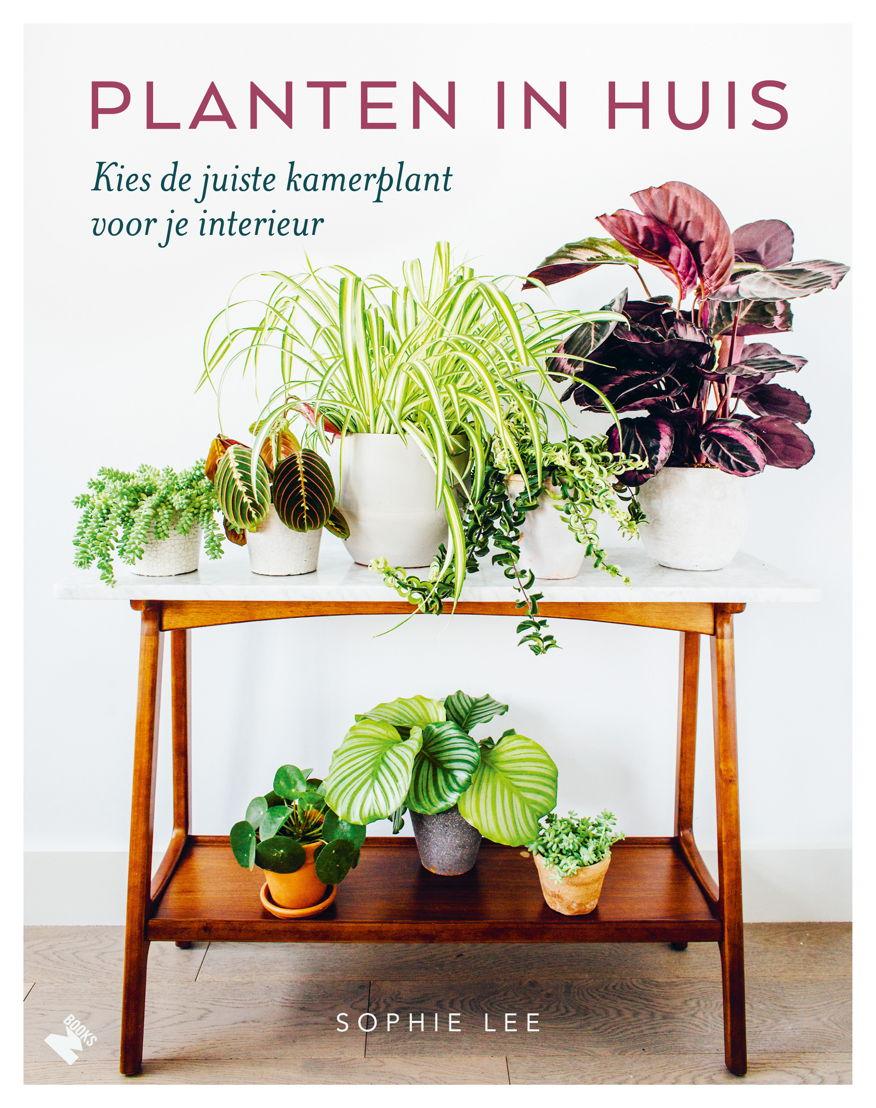 Planten in huis - Sophie Lee