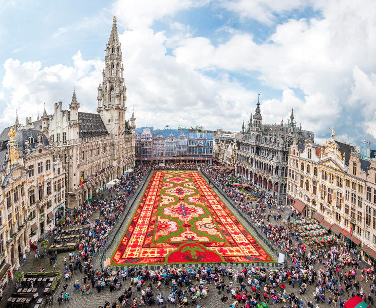 Brussels Flower Carpet 2014<br/>© Gaston Batistini