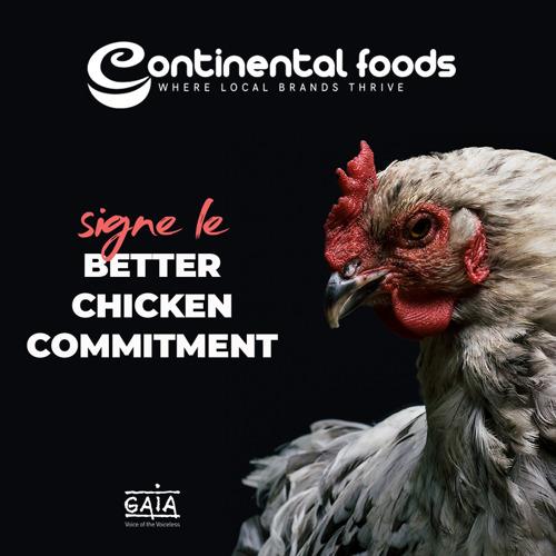 COMMUNIQUÉ DE PRESSE // CONTINENTAL FOODS S'ENGAGE CONTRE LES PIRES PRATIQUES D'ÉLEVAGE ET D'ABATTAGE DES POULETS