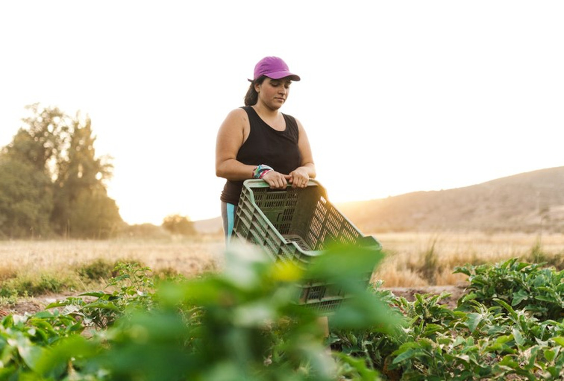 Sixteen key messages that united the countries of the Americas on the road to the UN Food Systems Summit
