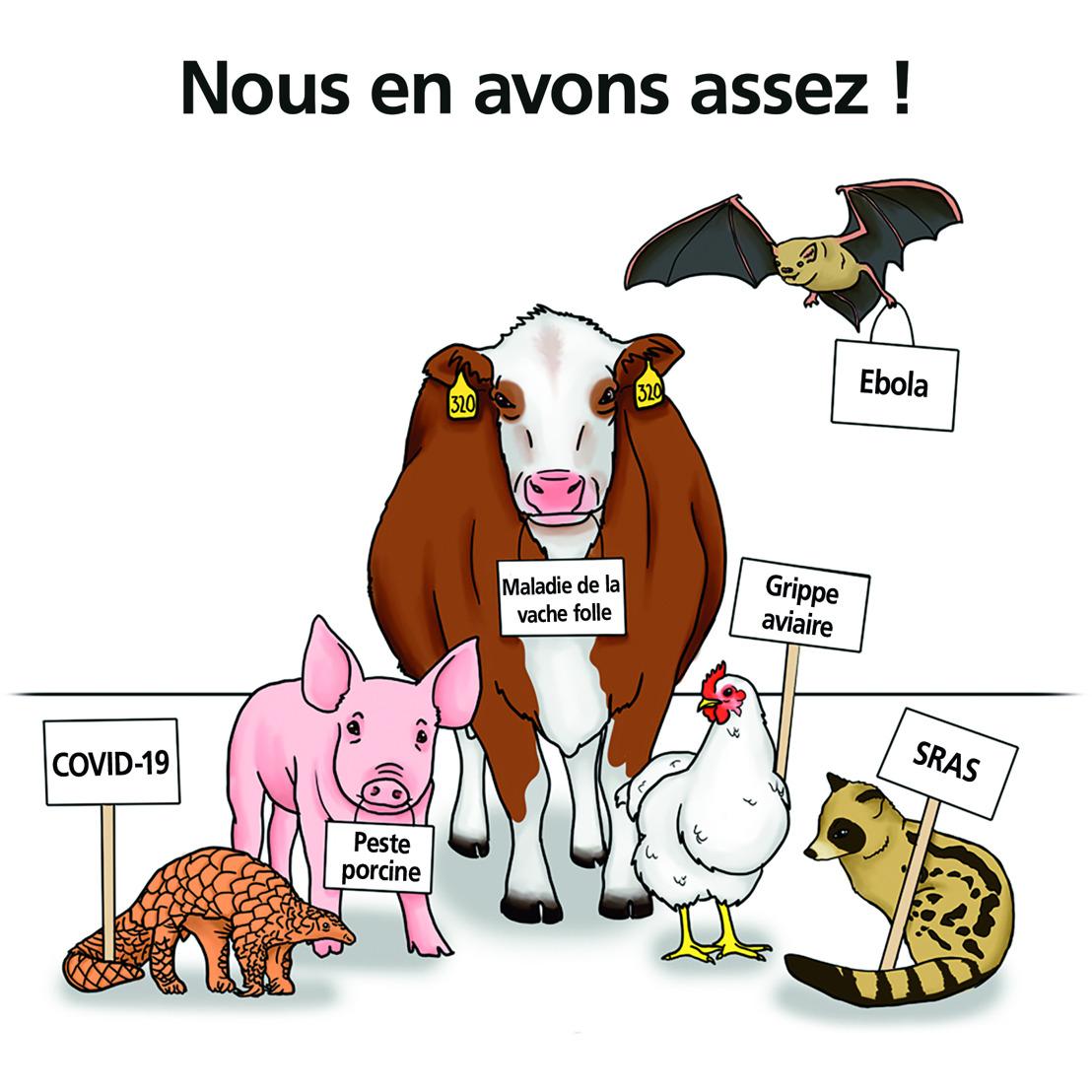 COMMUNIQUÉ DE PRESSE // Nouvelle campagne : GAIA lance une pétition pour l'interdiction des « marchés humides »