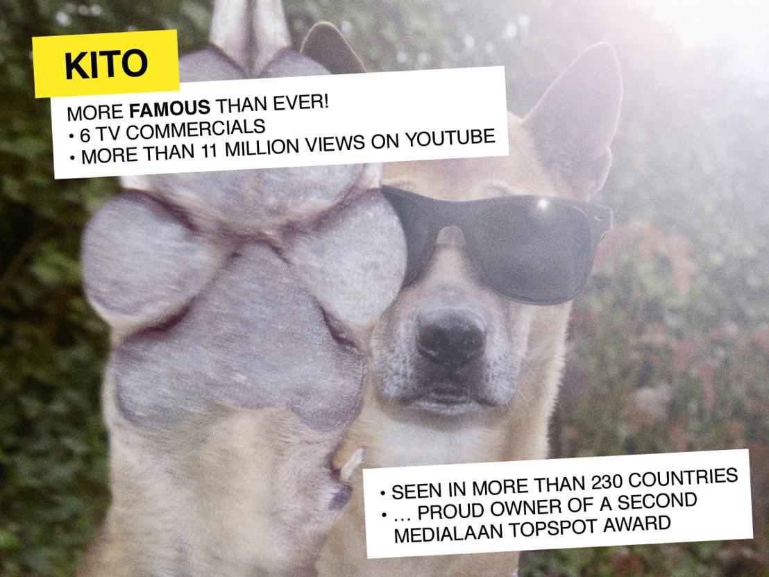 Kito van Electrabel wint tweede Medialaan Topspot Award