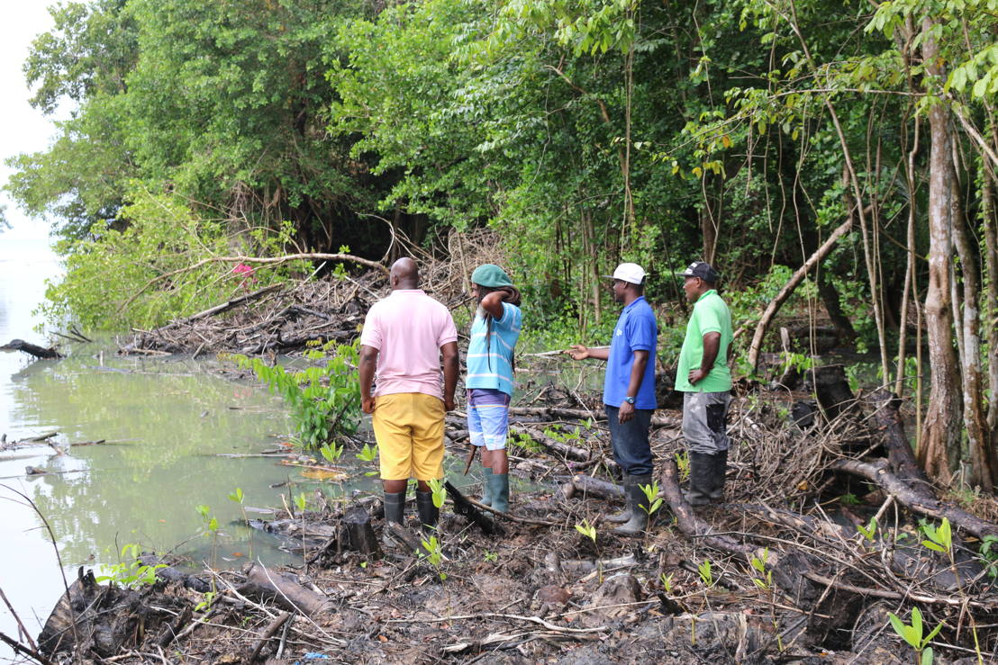 AFTER: Community workers onsite at the mangrove project.