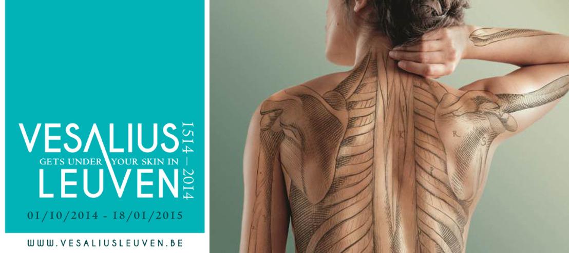 Vesalius will get under your skin in Leuven this autumn