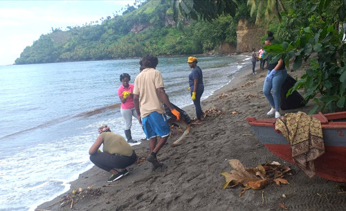 St. Vincent and the Grenadines Gets a Head Start with ReMLit