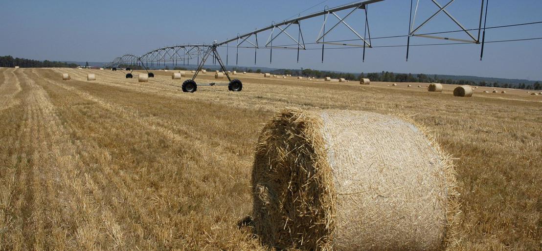 Europa vraagt burgers raad over toekomst landbouwbeleid