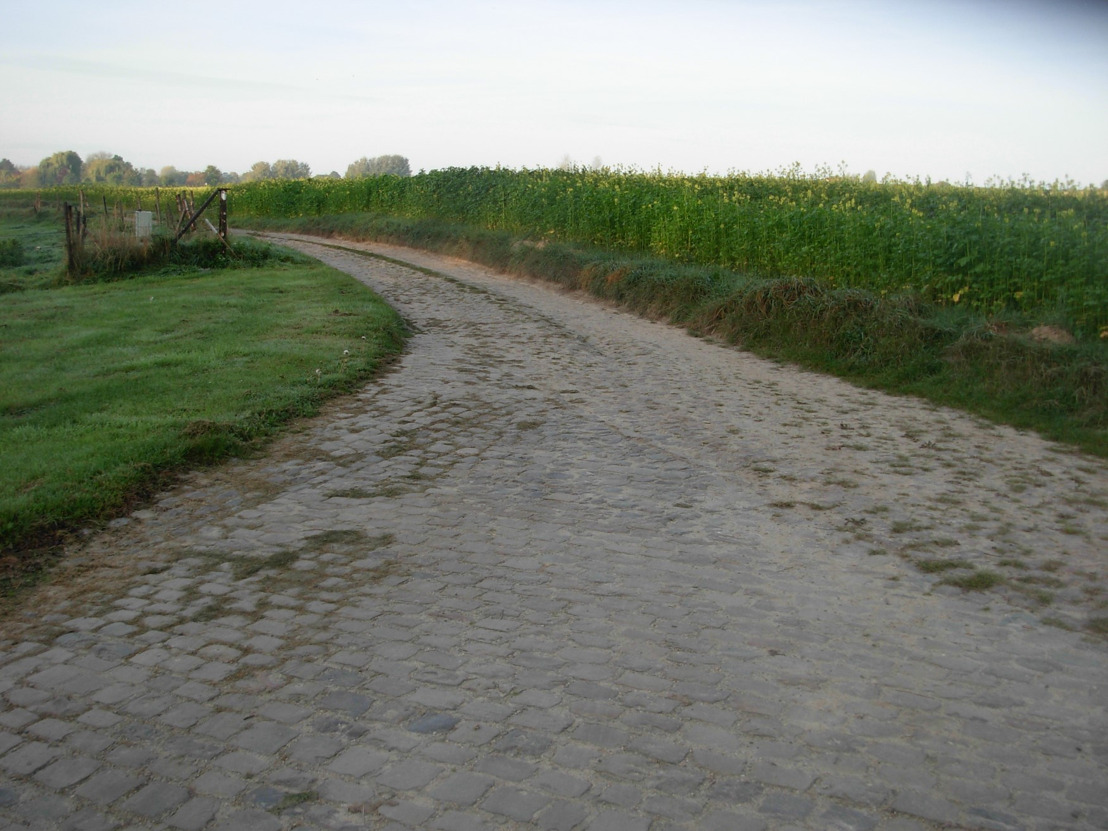 Subsidies voor de heraanleg van de Molenstraat in Meldert