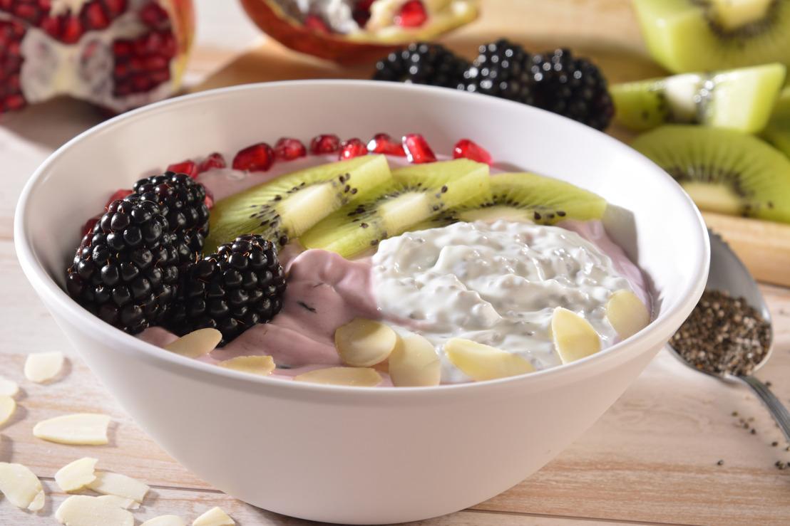 Yoghurt Oikos de arándanos con granada y mix de chía