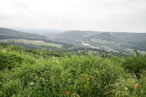 À vendre : terrain à bâtir avec vue sublime sur la vallée de la Meuse
