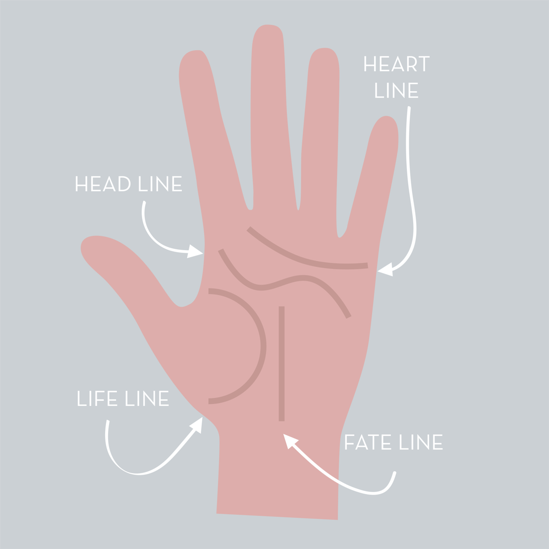 Illustration showing the four palm lines that make up the Palmistry Atrafloor design