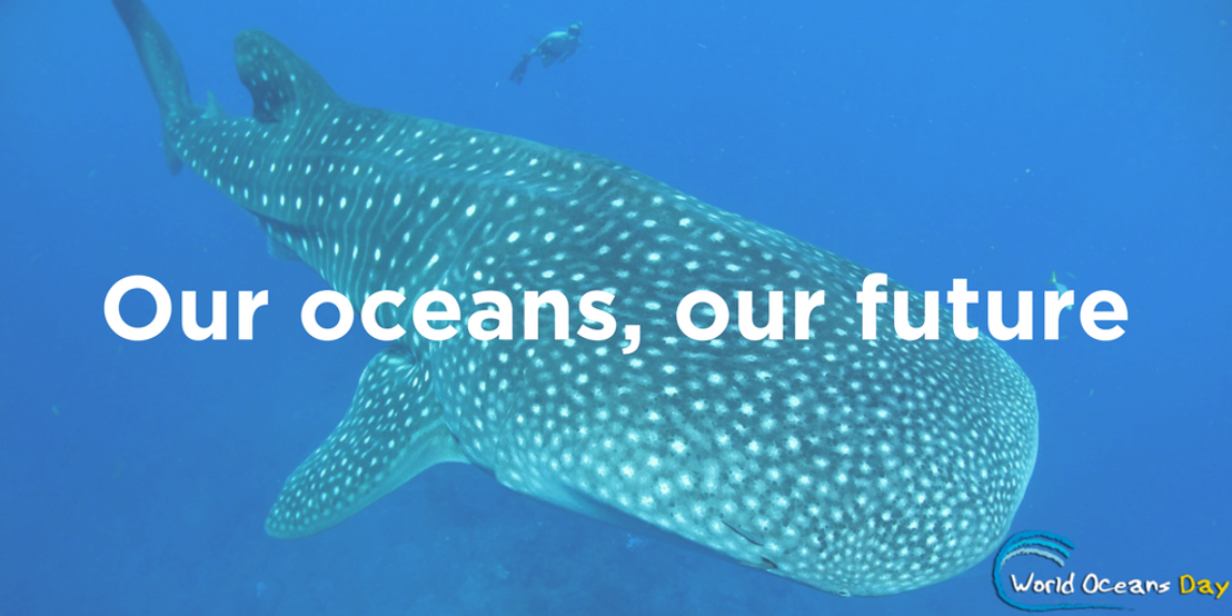 OECS Commission observes World Oceans Day