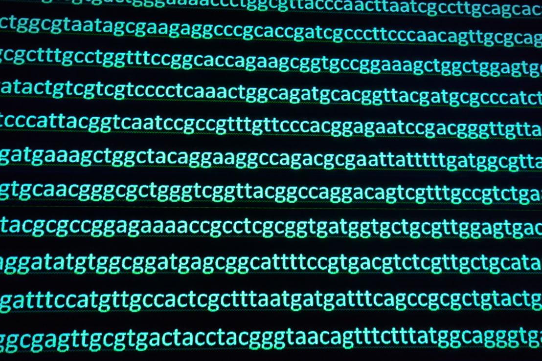 genoom sequenceren<br/><br/>© shutterstock