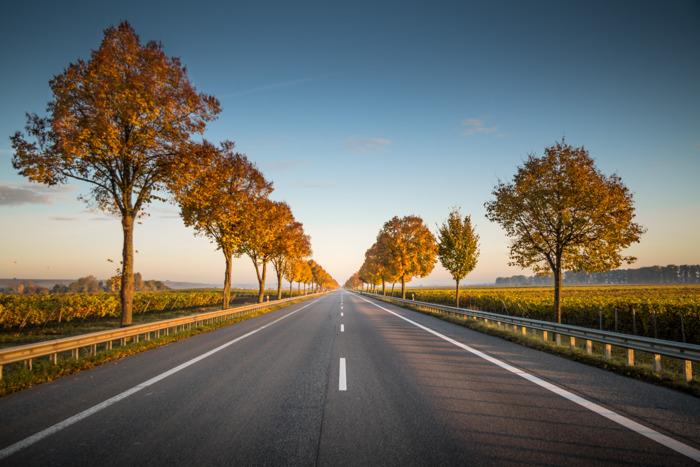 Webfleet Solutions présente son rapport 2021 sur la sécurité routière des flottes commerciales en Europe