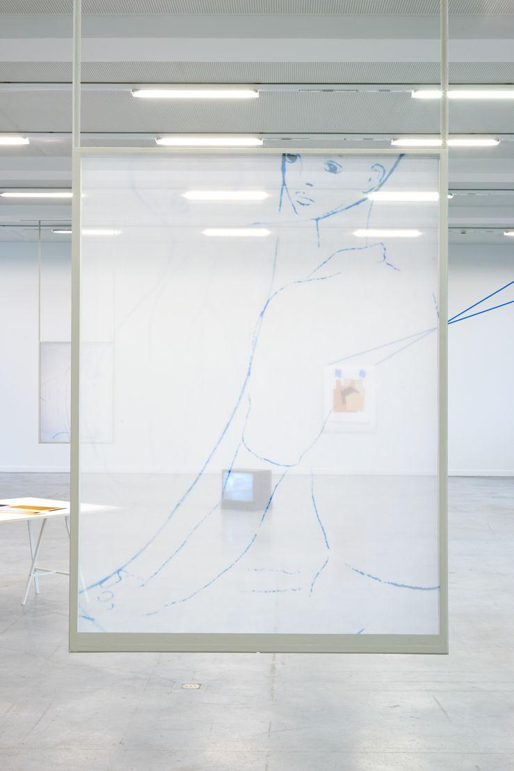 Jimmy Robert. Silks, 2015, M - Museum Leuven. Foto (c) Dirk Pauwels