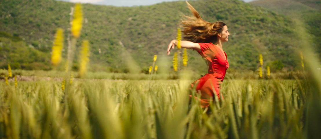 Reinventarte es Natural, el nuevo lanzamiento de Herbal Essences