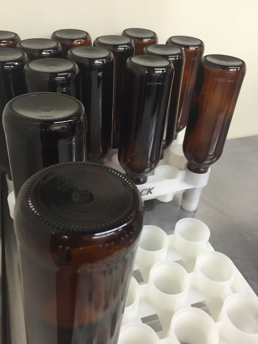 Sanitized bottles wait to be filled with cantaloupe gose