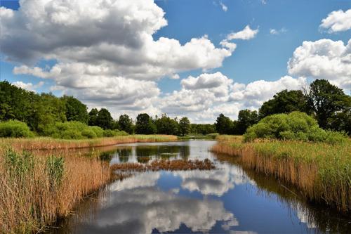 La directive européenne sur l'eau sauvée après que 375.000 Européens ont signé l'appel du WWF