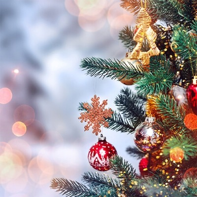 Ring in the holiday season with Mall of Georgia's annual Tree Lighting on November 17