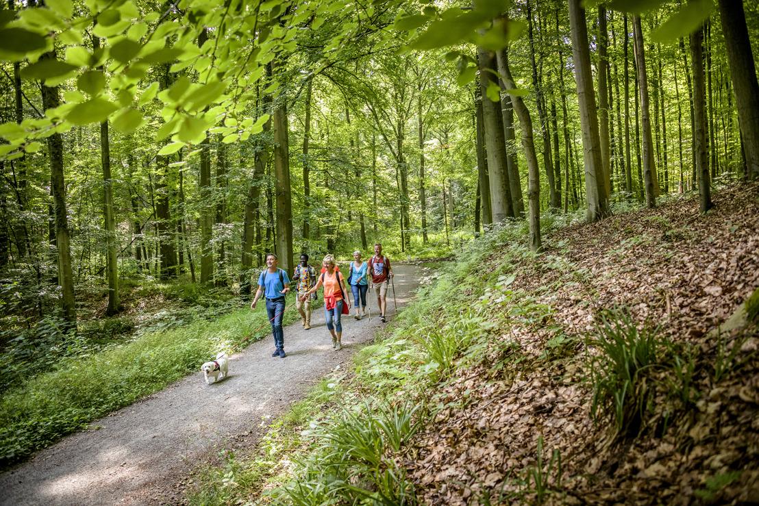 Vlaams-Brabanders weten van wandelen