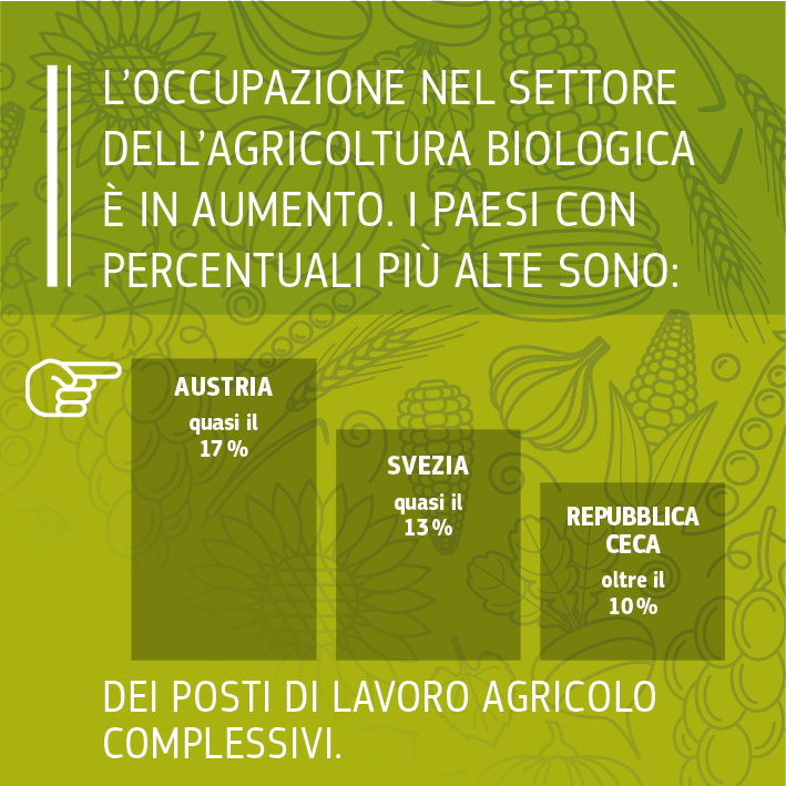 Fonti: Commissione europea 2016, Facts and figures on organic agriculture in the European Union: https://ec.europa.eu/agriculture/organic/sites/orgfarming/files/docs/pages/014_en.pdf. <br/>Commissione europea 2017, elaborazione dei dati Eurostat da parte della DG ENV.<br/>IFOAM/FIBL The World of Organic Agriculture. Statistics and Emerging Trends 2017: https://shop.fibl.org/chen/mwdownloads/download/link/id/785/