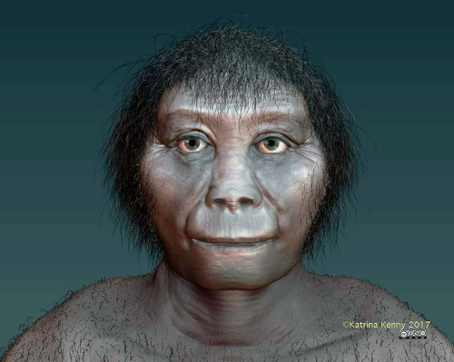 Origins of Indonesian 'hobbits' finally revealed